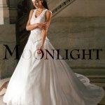 فستان زفاف رقم237