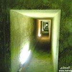 صور البراويز5