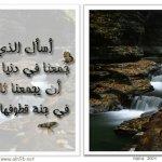 صور البراويز2