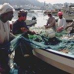 حرفة صيد السمك Size:62.90 Kb Dim: 510 x 332