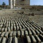 قلعة بركة الموز Size:45.90 Kb Dim: 318 x 480
