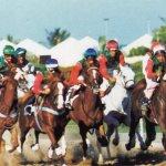 سباق الخيول Size:50.40 Kb Dim: 550 x 345