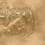 ابو المجد4