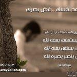 حملة عينك أمانة بالصور2