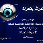 حملة عينك أمانة بالصور7