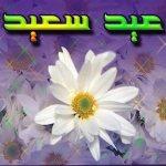 بطاقات المناسبات الدينية4 Size:37.10 Kb Dim: 640 x 480
