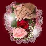 بطاقات تهاني الزواج والخطوبة4 Size:10.70 Kb Dim: 337 x 347
