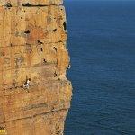 هواية التسلق بل هي هواية المخ6