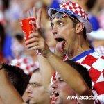 يورو 20084