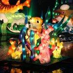 مهرجان الفانوس الصيني بمناسبة6