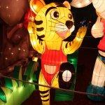 مهرجان الفانوس الصيني بمناسبة10