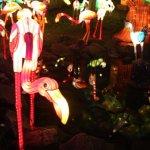 مهرجان الفانوس الصيني بمناسبة12