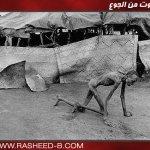 الموت من  الجوع