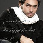 الممثلين والفنانين العرب13