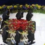 جنازة الفنان مايكل جاكسون في 8