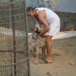بحريني يربي حيوانات في بيته5