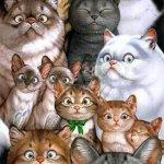 الحيوانات الأليفة13