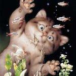 الحيوانات الأليفة7