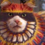 القطط والتلوين9