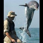 حقائق مذهلة عن الدلافين، الأر12