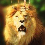 ملك الغابة