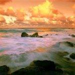 الشواطئ والبحار والأنهار5