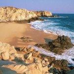 الشواطئ والبحار والأنهار2