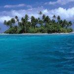 الشواطئ والبحار والأنهار10