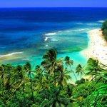 الشواطئ والبحار والأنهار14