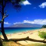 الشواطئ والبحار والأنهار1