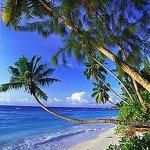 شاطئ خلاب