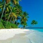 شاطئ Size:11.30 Kb Dim: 280 x 210