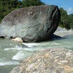 صخره  على  شكل  سمكه Size:212.20 Kb Dim: 500 x 667