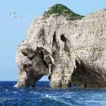 صخره على  شكل  فيل Size:117.60 Kb Dim: 500 x 368