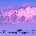 جبل مكسو بالثلج Size:91.60 Kb Dim: 800 x 600