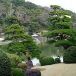 مناظر طبيعية من اليابان Size:83.50 Kb Dim: 640 x 480