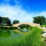 حديقة القرم  Size:224.70 Kb Dim: 1001 x 644