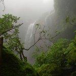 مناظر طبيعية بالهند2