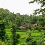 مناظر طبيعية بالهند10