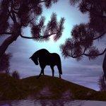 حصان Size:83.80 Kb Dim: 800 x 600