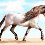 الحصان العربي Size:25.50 Kb Dim: 667 x 400