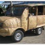 سيارة من سعف النخيل1