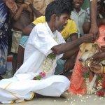 رجل يتزوج كلب بالهند؟!1