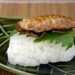 مأكولات يابانية غريبه4