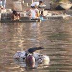 الهندوس في الهند يرمون موتاهم1