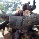 صور احراق الميت فى الهند 6