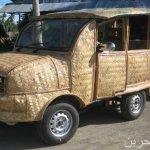 حماية البيئة وسيارة من سعف ال1