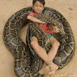 عائلة تايلندية .. وطريقة جديد5