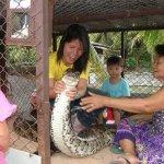 عائلة تايلندية .. وطريقة جديد9