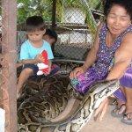 عائلة تايلندية .. وطريقة جديد11